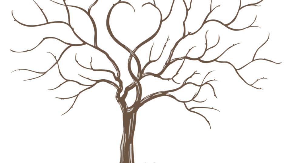 дерево добра фото все было